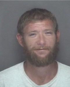 felony arrests